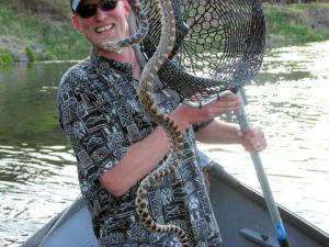 Snake On