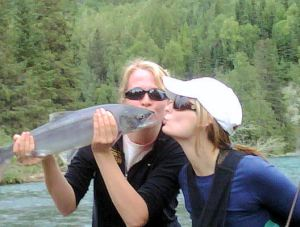 Kissing Salmon
